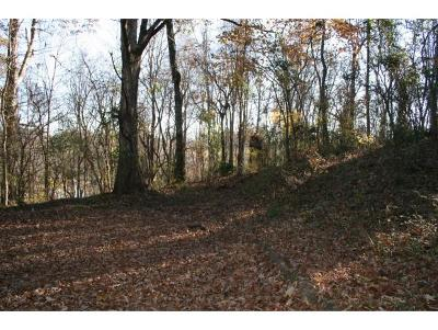 Washington-Tn County Residential Lots & Land For Sale: 805-806 Turnpike Ct
