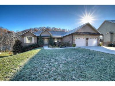Gray Single Family Home For Sale: 172 Settlers Way