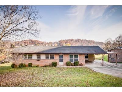 Kingsport Single Family Home For Sale: 105 Fairwood
