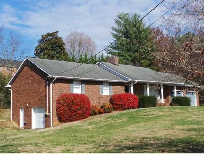 Kingsport Single Family Home For Sale: 1212 Meadow Lane