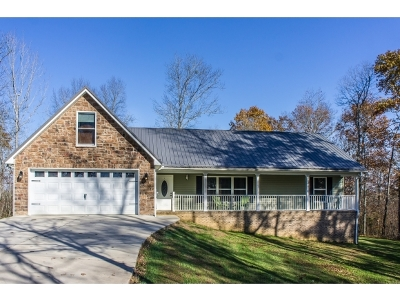 Mosheim Single Family Home For Sale: 335 Wisecarver Rd.