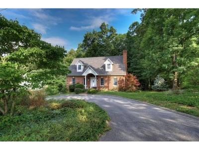 Jonesborough Single Family Home For Sale: 139 Bob Clark Road