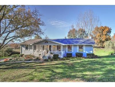 Greeneville Single Family Home For Sale: 504 Whisperwood Dr