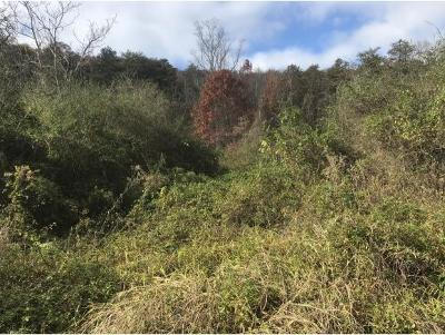 Greene County Residential Lots & Land For Sale: 9.6 Ac Dyer Hollow Road