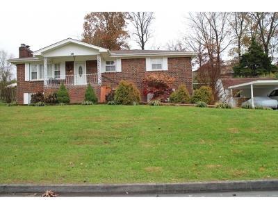 Bristol VA Single Family Home For Sale: $164,500