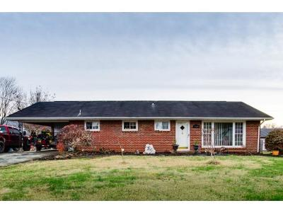 Single Family Home For Sale: 564 E Morgan St