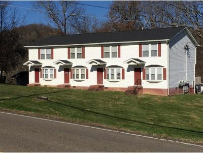 Bristol Multi Family Home For Sale: 517 Bristol Caverns Hwy