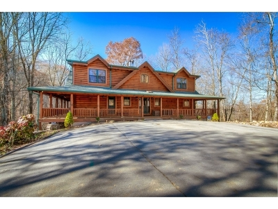 Damascus, Bristol, Bristol Va City Single Family Home For Sale: 18020 Nordyke Road