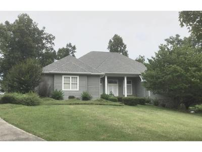 Greeneville Single Family Home For Sale: 105 Mountain River Drive