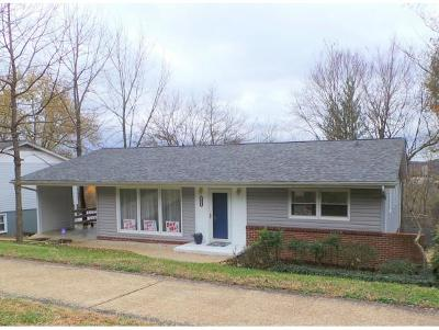 Kingsport Single Family Home For Sale: 553 Bays View Road