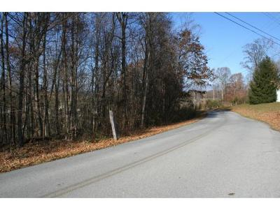 Washington-Tn County Residential Lots & Land For Sale: 379 Mitchell Ridge Rd