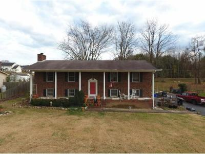 Kingsport Single Family Home For Sale: 208 Hidden Acres
