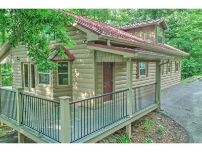 Elizabethton Single Family Home For Sale: 1301 Hillside Dr
