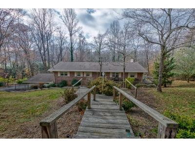 Bristol Single Family Home For Sale: 117 Sequoia Lane