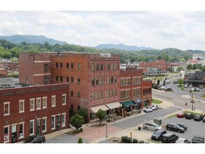 Condo/Townhouse For Sale: 116 Tipton #204