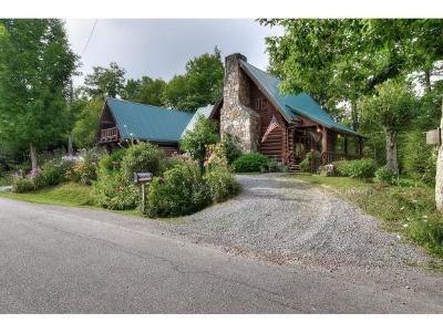 Roan Mountain Single Family Home For Sale: 1734 Ripshin Mtn. Rd.