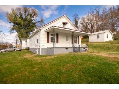 Kingsport Single Family Home For Sale: 3800 Busbee St