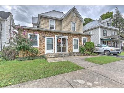 Johnson City Multi Family Home For Sale: 412 E Watauga Ave
