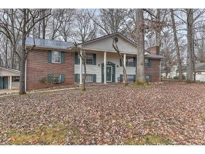 Greeneville TN Single Family Home For Sale: $215,000