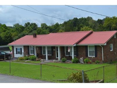 Kingsport Single Family Home For Sale: 2225 Hinkle Road