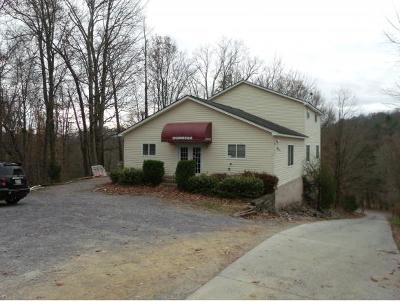 Greene County, Washington-Tn County Single Family Home For Sale: 412 Kinchloe Mill Rd.