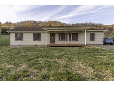 Bristol VA Single Family Home For Sale: $155,000