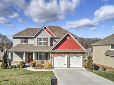 Kingsport Single Family Home For Sale: 2585 Bridgeforth Crossing