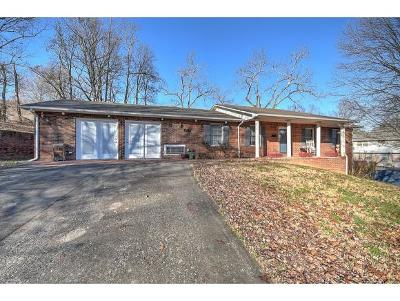 Kingsport Single Family Home For Sale: 4232 Rock Rose Circle