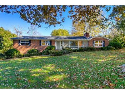 Kingsport Single Family Home For Sale: 4317 Fairlawn Drive