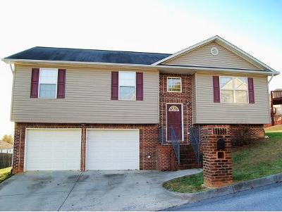 Kingsport Single Family Home For Sale: 1136 Stone Edge Drive