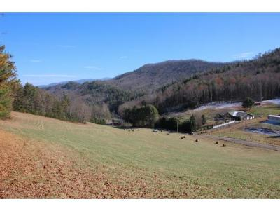 Butler Residential Lots & Land For Sale: Little Dry Run Road