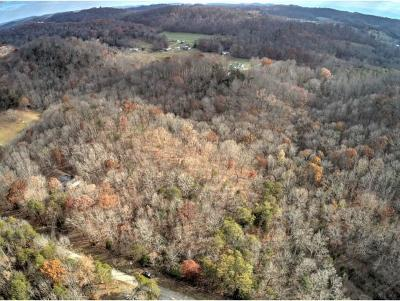 Greene County Residential Lots & Land For Sale: Lot 7 Dogwalk Rd.