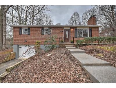 Kingsport Single Family Home For Sale: 549 Kallen Drive