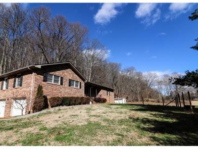 Kingsport TN Single Family Home For Sale: $194,900