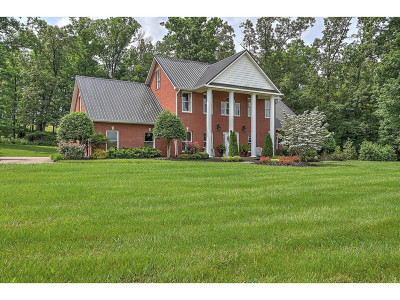 Greeneville Single Family Home For Sale: 850 Doolittle
