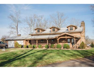 Mosheim Single Family Home For Sale: 6469 Blue Springs Parkway