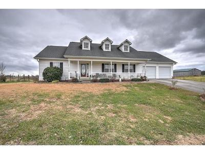 Gray Single Family Home For Sale: 216 Ford Creek Road