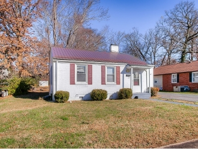 Kingsport Single Family Home For Sale: 1416 Garden Drive