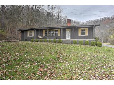 Bristol TN Single Family Home For Sale: $225,000