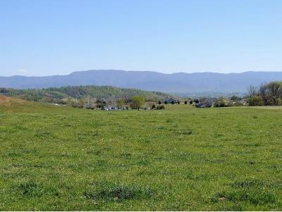 Greene County Residential Lots & Land For Sale: Old Stage