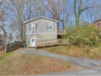 Bristol VA Single Family Home For Sale: $85,000