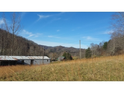 Roan Mountain TN Single Family Home For Sale: $45,000