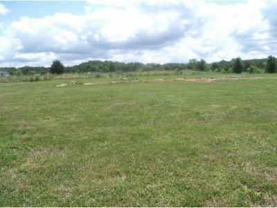 Greene County Residential Lots & Land For Sale: Lot 19 Carters Valley Rd