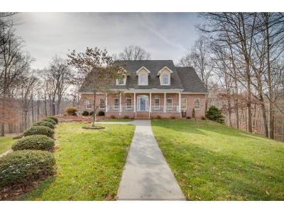 Kingsport TN Single Family Home For Sale: $434,900