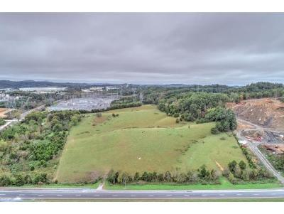 Bluff City Residential Lots & Land For Sale: Highway 19e