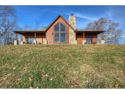 Single Family Home For Sale: 133 Hartmantown Rd