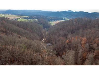 Johnson City Residential Lots & Land For Sale: Chock Creek