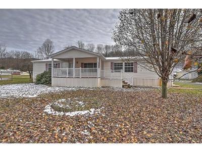 Elizabethon TN Single Family Home For Sale: $119,900