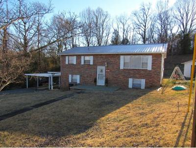 Single Family Home For Sale: 990 Choctaw Drive