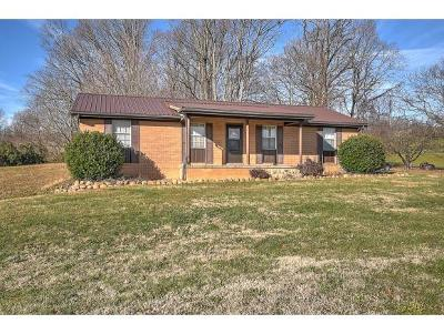 Single Family Home For Sale: 1020 Pigeon Hollow Rd.